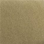 Pale Green Fabric