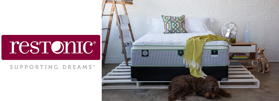 Restonic Mattress with Dog