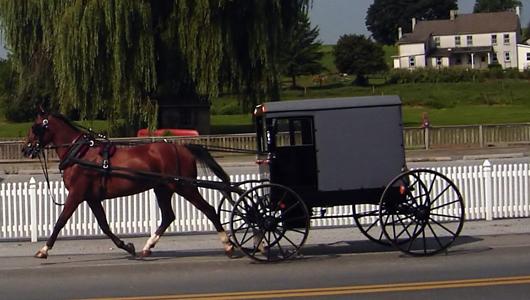 Custom Solid Wood And Amish Furniture Ohio Made Wayside