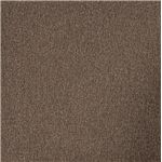 Taupe Chenille Upholstery has a Warm and Welcoming Look of Elegance