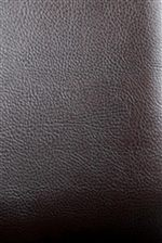 Dark Brown Leather Upholstery