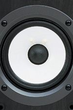Two-Way Bass-Reflex Speakers Feature MDF Construction for Enhanced Sound Quality and Longer Life