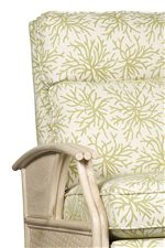 Gathered Rattan Track Arms and Tall, Plush Back Cushion