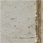 Distressed Vintage Neutral Paint