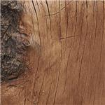 Ash Wood Look