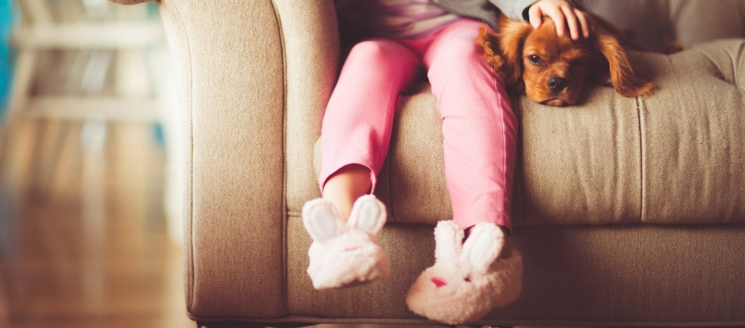 Girl and dog on sofa