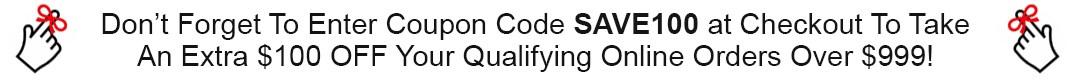 SAVE100 Promo Code Cart Banner