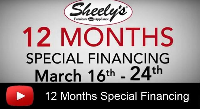 12 mos special financing