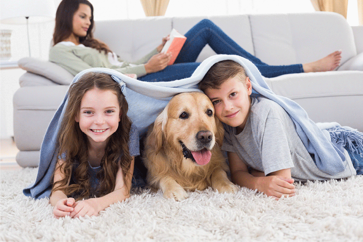 Kids and a Dog Under a Blanket