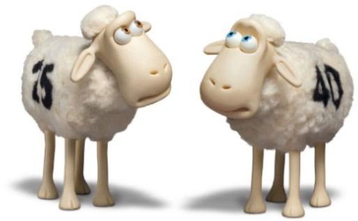 Serta Sheep