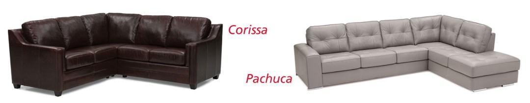 Corissa & Pachuca