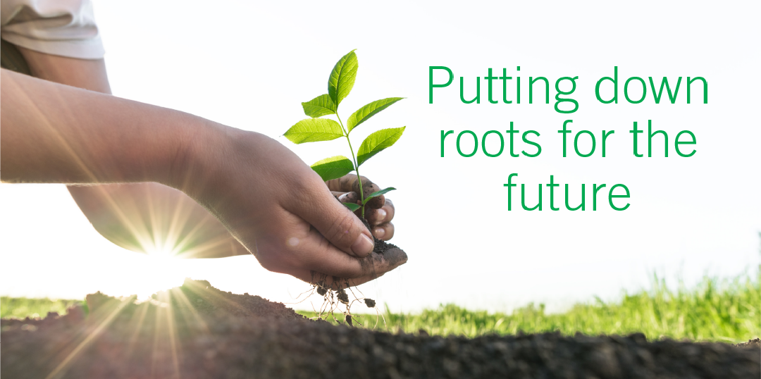 Putting Down Roots For The Future