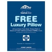 Free Luxury Pillows with purchase Instant Rebate