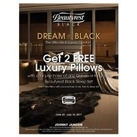 2 Free Pillows with Beautyrest Black purchase