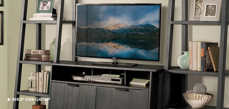 Shop Entertainment Centers and Bookcases