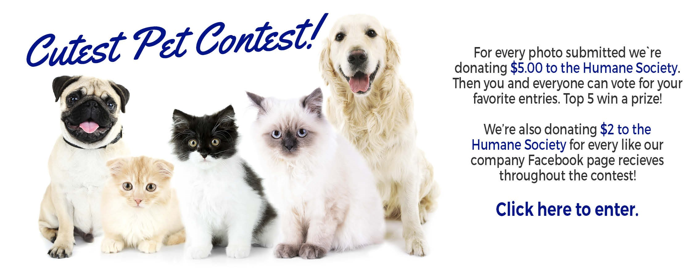 Cutest Pet Contest!