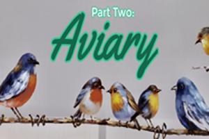 Trendwatch - Aviary