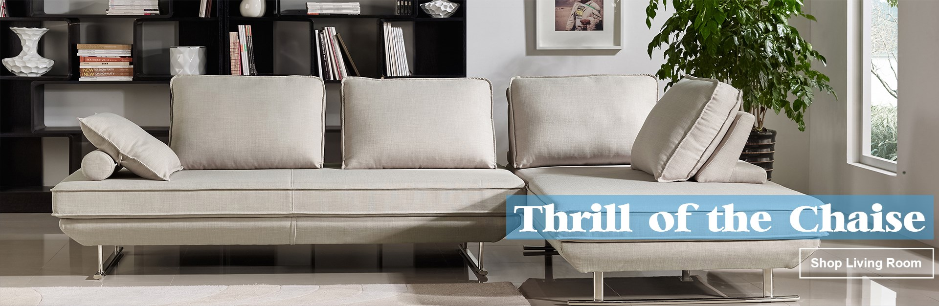 Thrill of Chaise