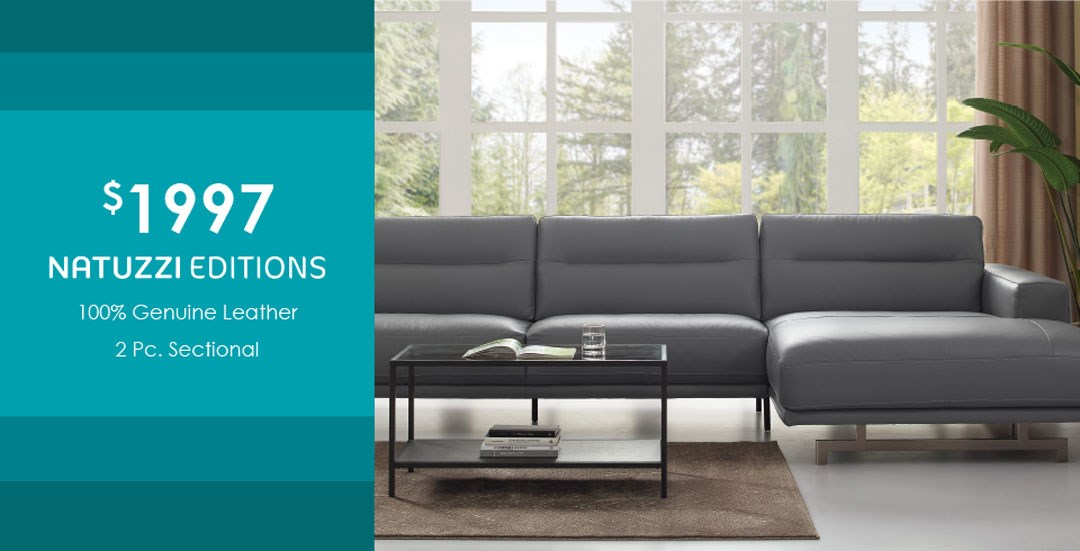 LPY sectional