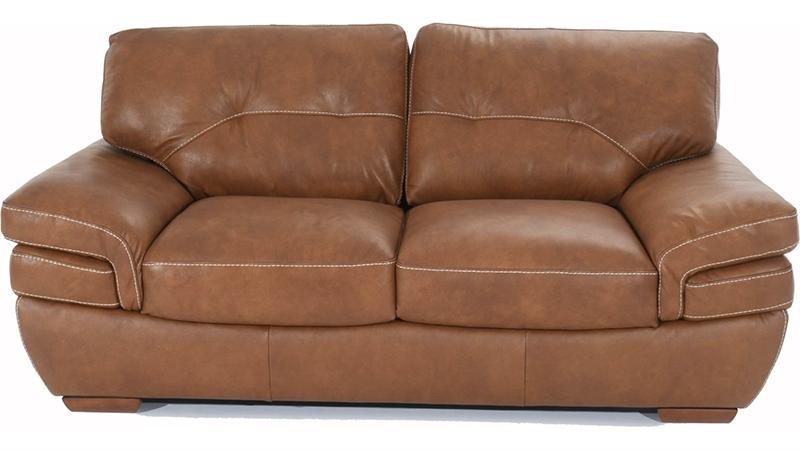 Natuzzi Editions B806 Contemporary 2-Seat Love Seat