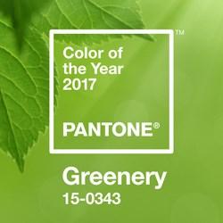 Pantone Greenery Swatch