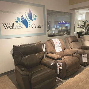 Darvin Wellness Center - Power Motion Recliners