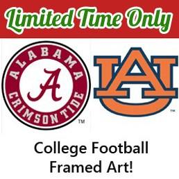 college framed art