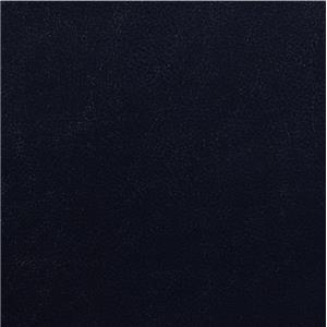 Aashi Navy Leather-Gel Match 55370