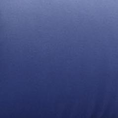 Blue Arche Blue