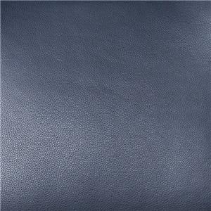 Bison Deep Blue BIS2006
