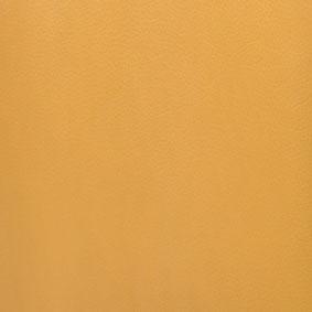 Cole Yellow Leather COE Yellow