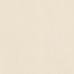 Mont Blanc Ivory FLG1817