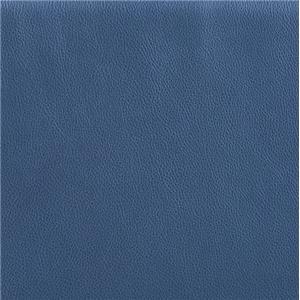 Blue Leather TUI Blue Leather
