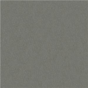 Platinum Microfiber 22113C