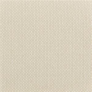 Cream Body Fabric 2461-34CC