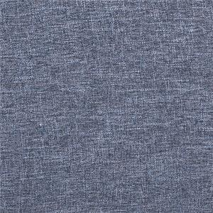 Blue 2657 Blue