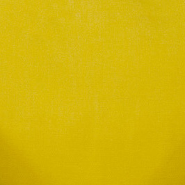 Spectrum Daffodil Spectrum Daffodil