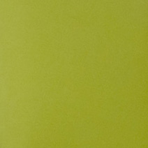 Spectrum Kiwi Spectrum Kiwi