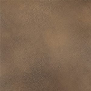 Brown 469-04