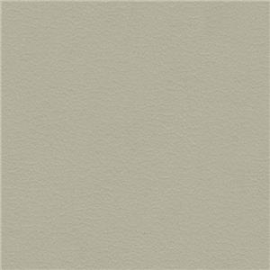 Taupe Semi Aniline Leather 469-86