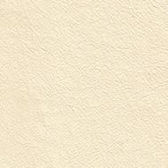 Trend Vanilla T404