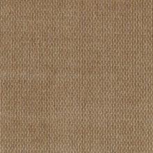 Troy Wheat C108173