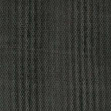 Troy Pheasant C108186