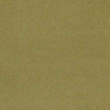 Caprice Waterlily D107523