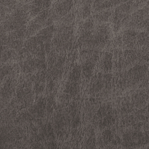 Sun Dance Charcoal i-Clean Performance Fabric D143057