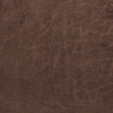 Sun Dance Sable iClean Performance Fabric D143078