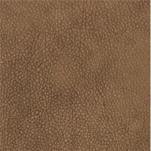 Montana Camel DL159574