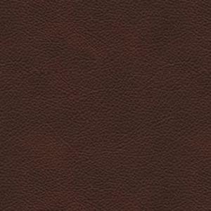 Spellbound Chocolate EL962478