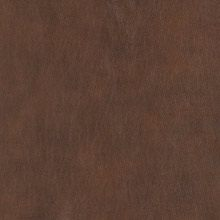 Panoramic Tobacco LB112177