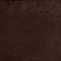 Maximus Cocoa LB127078